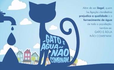 gato agua crime
